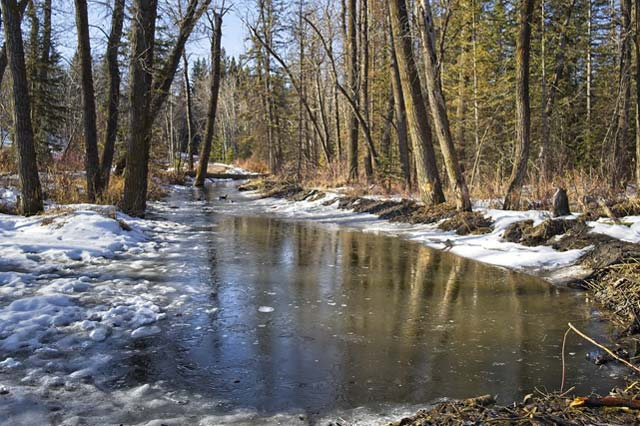 The Spring Melt and Flood Prevention for Your RTM Home
